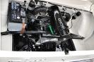 Motoren an 2010_3